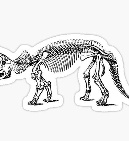 Triceratops Dinosaur Sticker