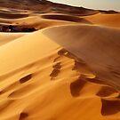 Desert Tents by citrineblue