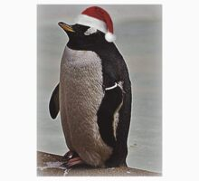 Merry Christmas Mr Penguin Kids Clothes
