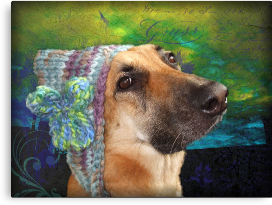 Mallow and her knitted hat by Tibbs