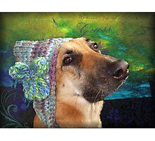 Mallow and her knitted hat Photographic Print
