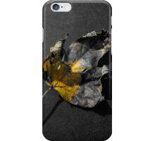 Fallen leaf color splash iPhone Case/Skin