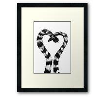 Lemur Love  Framed Print