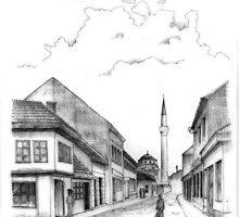 Banja Luka, Ferhadiye mosque by Emir Isovic
