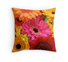 Brightly coloured gerbera Throw Pillow
