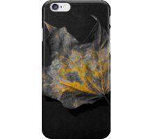Color splash fallen leaf iPhone Case/Skin