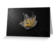 Color splash fallen leaf Greeting Card