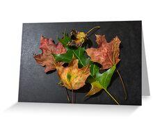 Leaf lineup Greeting Card
