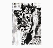 lion...pencil drawing Unisex T-Shirt
