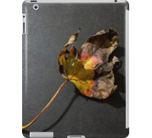 Fallen leaf in fall iPad Case/Skin