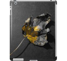 Fallen leaf color splash iPad Case/Skin