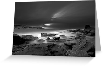 Patches of White by Mark  Lucey