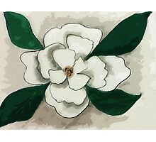 white Magnolia bloom, watercolor Photographic Print