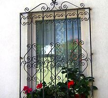 Wrought Iron and Transparences by sstarlightss