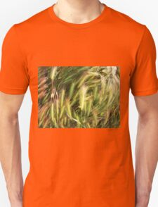 Top view of the dry spikes on the lawn Unisex T-Shirt