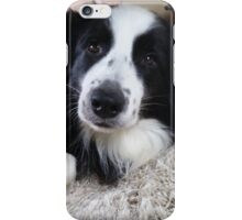 Benson  iPhone Case/Skin
