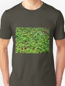 Dew on green plants that grow from the fallen yellow leaves Unisex T-Shirt