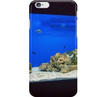 Large and long aquarium with sea water blue iPhone Case/Skin