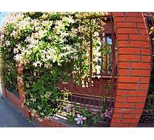 Facade of the building with a brick wall with flowers Photographic Print
