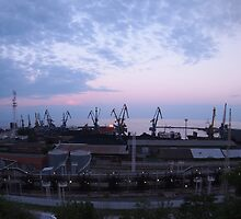 View of a cargo seaport against the evening cloudy sky by vladromensky