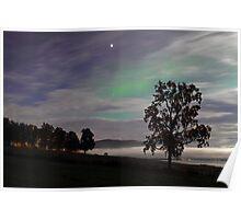 Tree & Aurora Borealis -II Poster