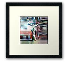P1450116 _P1450119 _XnView _GIMP Framed Print