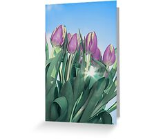 Tulips with sky Greeting Card