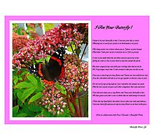 Butterfly Kisses ! Photographic Print