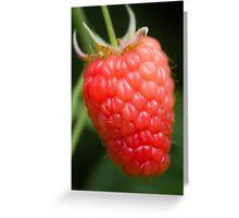 MMM Raspberries Greeting Card