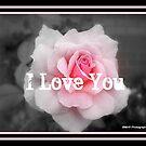 I Love you by Mechelep