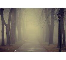 autumn gloom  Photographic Print