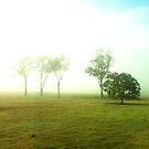 Haunted Dawn by Bami