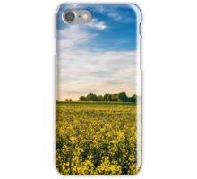Mecklenburger Kulturlandschaft iPhone Case/Skin