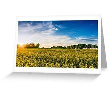 Mecklenburger Kulturlandschaft Greeting Card