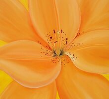 Peachy Summer by Maria  Williams
