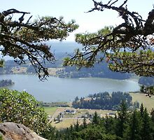 Lake Campbell from Mount Erie by Really-Rosiem