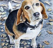Beagle in Autumn by Nicole Zeug