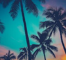 Hawaii Palm Trees At Sunset by mrdoomits