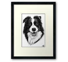 Border Collie Smile Framed Print