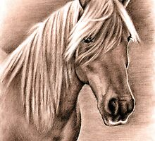 Haflinger Horse Mare Portrait  by Nicole Zeug