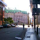 Walking towards the Plaza de Mayo by DCFotos