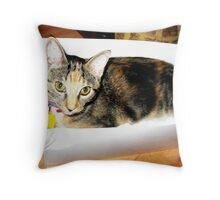 I'll take this one. Throw Pillow