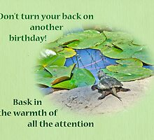 Birthday Card - Baby Snapping Turtle by MotherNature