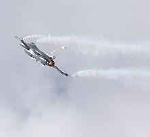 Lockheed Martin F-16 Fighting Hornet by Ian Middleton