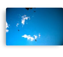 NYC skyscape Canvas Print