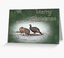 Christmas Card - Wild Turkeys Greeting Card