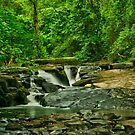 River @ Clare Glens, Newport, Co Tipperary, Ireland by John  Carey