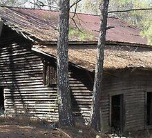 Alabama Barn by WildestArt