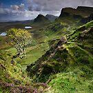 Skye: Heather, Hawthorn & Light by Angie Latham