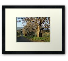 Down Hockey's Lane.   (Cambewarra, NSW) Framed Print